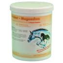 Vetripharm Equipower Magnesium 750 g