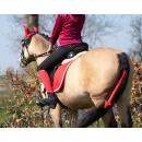 QHP Halloween-Set für Pferde und Reiter Teufel Größe Full Warmblut