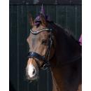 QHP Halloween-Set Pferde und Reiter Spinne