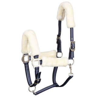 Harrys Horse Equestrian Society Pearl Halfterset