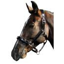 Harrys Horse Nüsternschutz Nasennetz schwarz