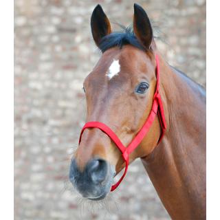 Waldhausen Weidehalfter rot Pony